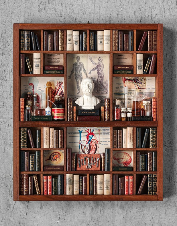 Medicine Theme - Miniature Library
